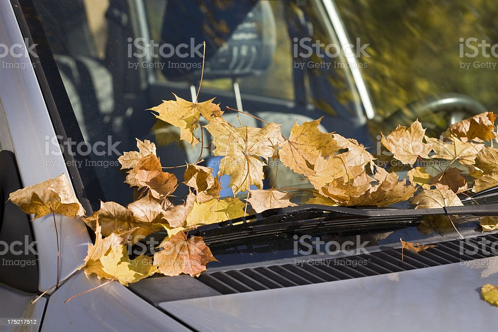 obstructed view royalty-free stock photo