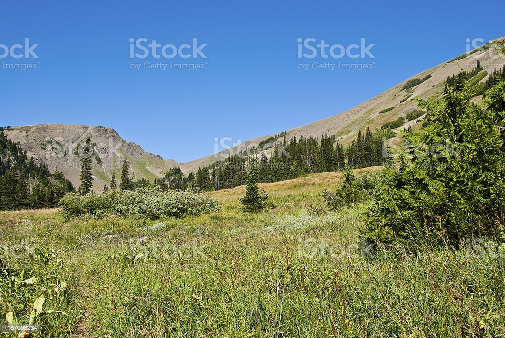 Obstruction Point and Badger Valley royalty-free stock photo