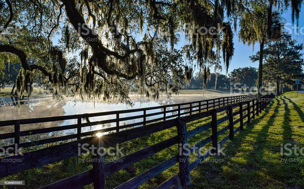 Ocala Florida Horse Country stock photo