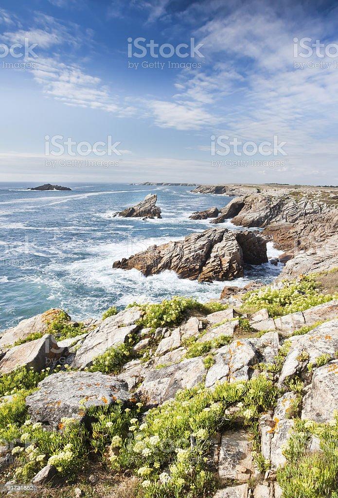 Ocean coastline royalty-free stock photo