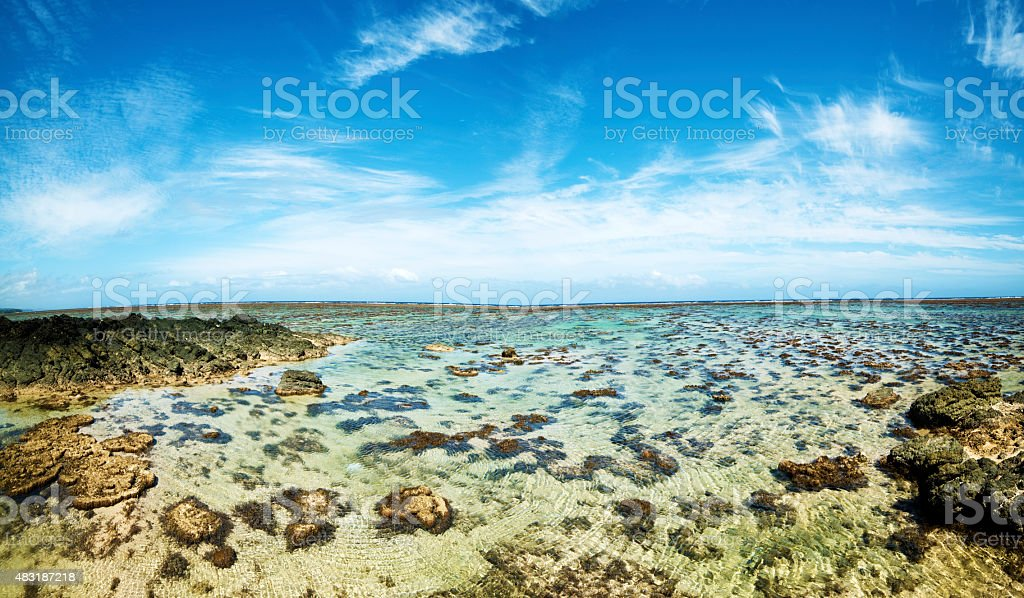 Ocean coral view stock photo