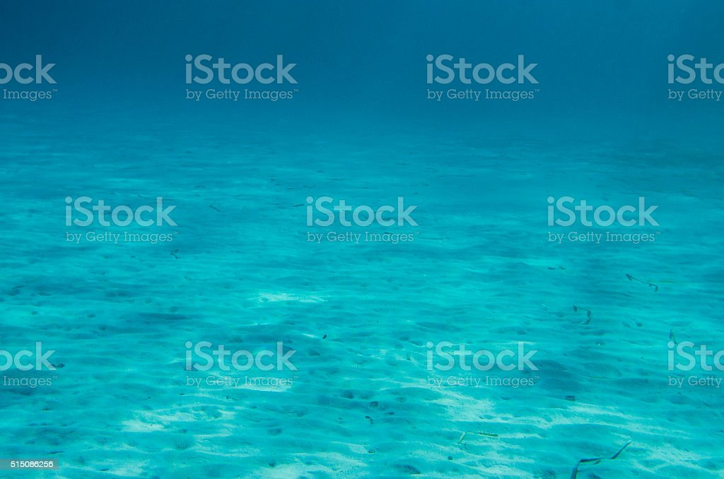 Ocean Floor underwater stock photo