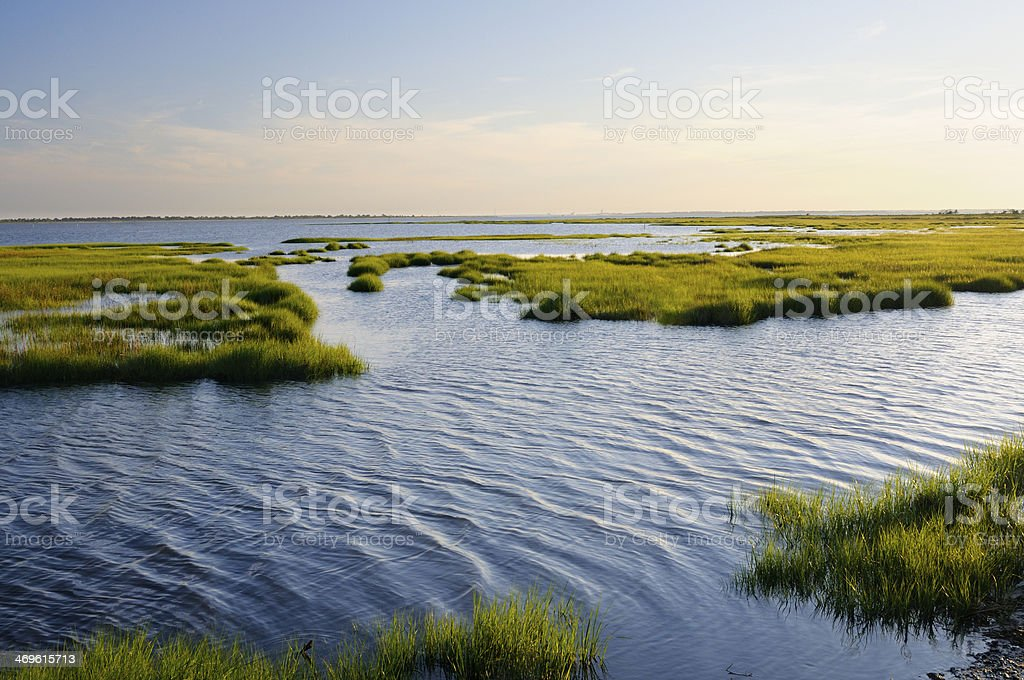 Ocean Inlet with Marsh Grass stock photo