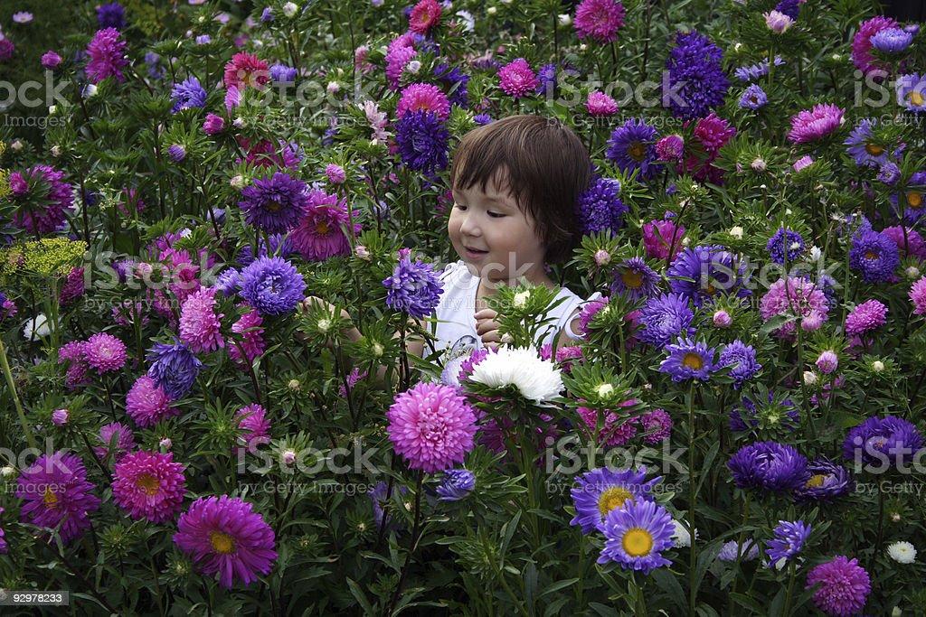 Mar de flores foto royalty-free
