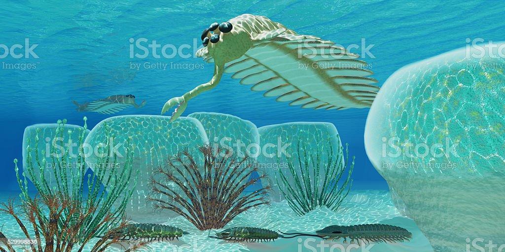 Ocean Opabinia stock photo
