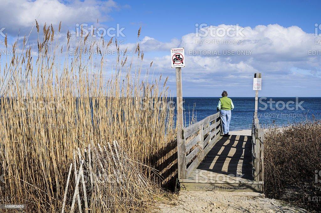 Ocean Overlook royalty-free stock photo