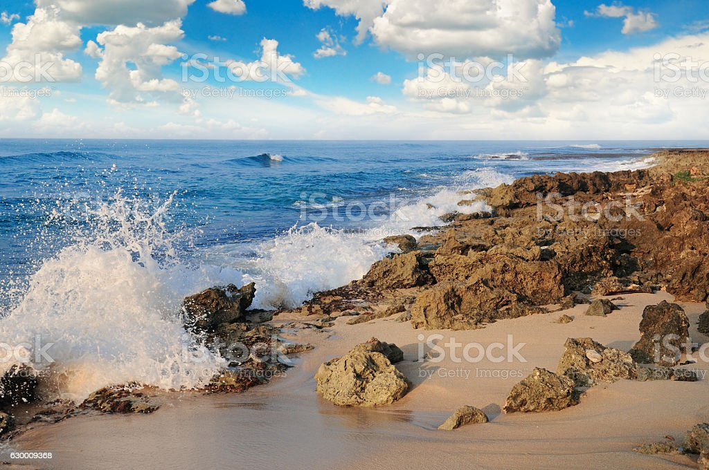 ocean, picturesque beach and blue sky stock photo