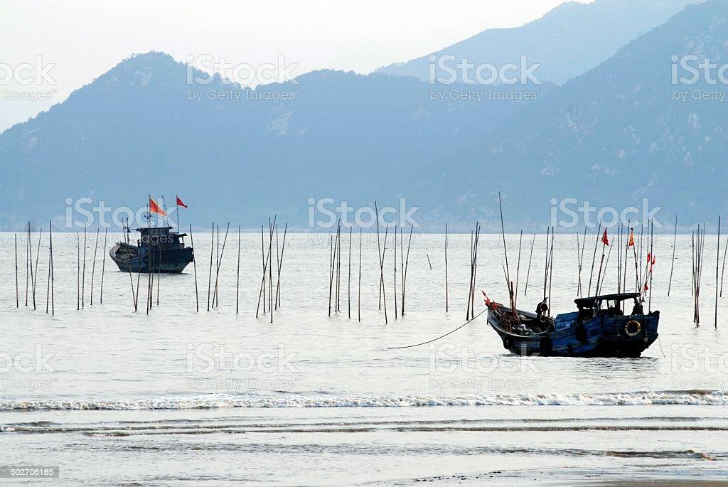 Ocean seaweed farm royalty-free stock photo