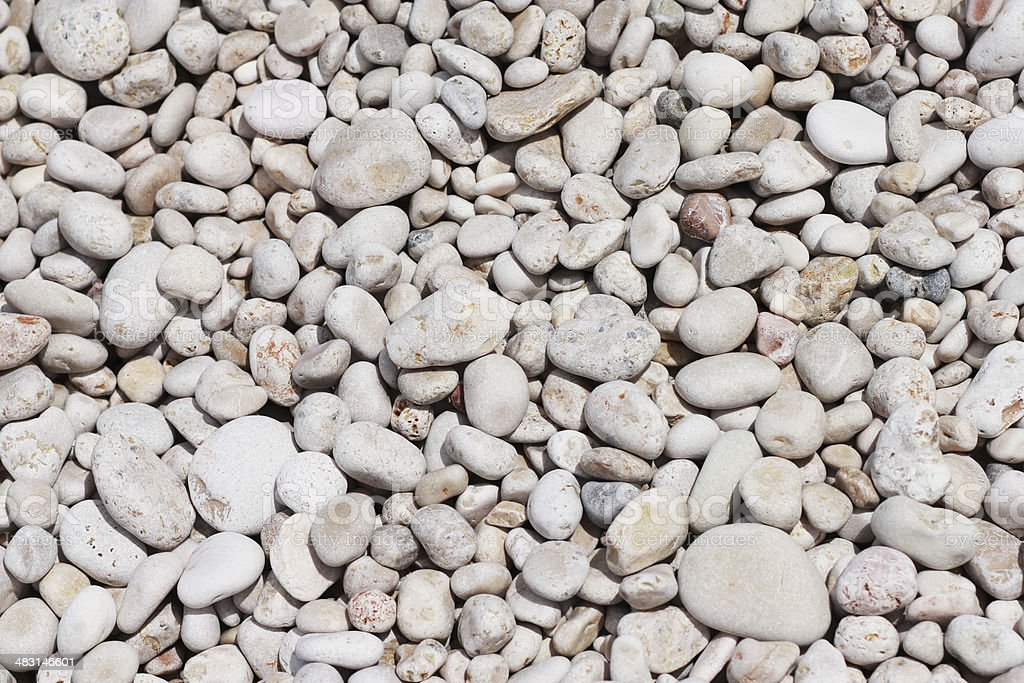 Ocean Shore, South Pacific on the shiny wet gravel stock photo