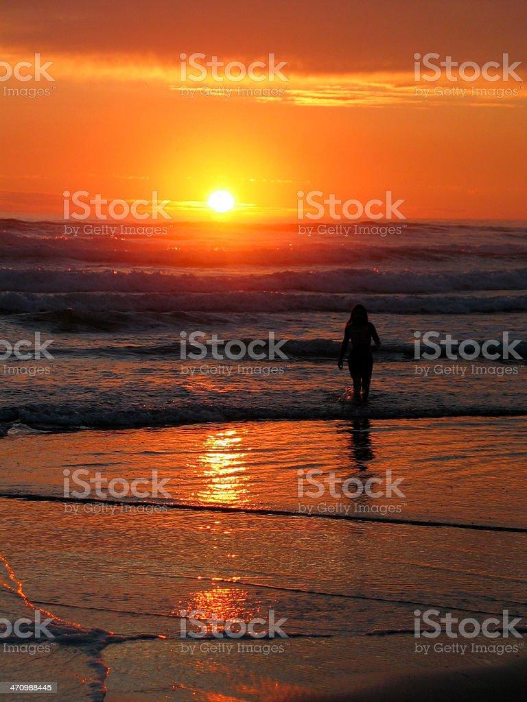 Ocean Silhouette royalty-free stock photo