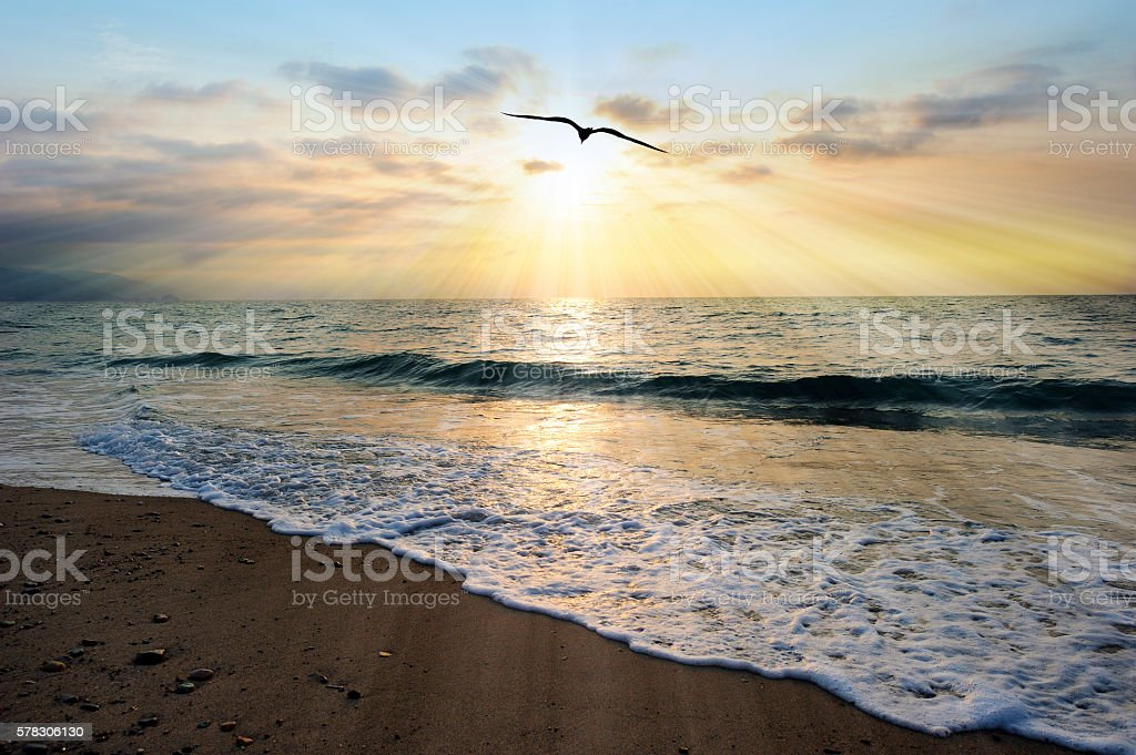 Ocean Sunset Rays stock photo