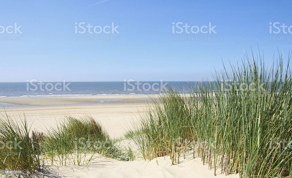 Ocean View from Sand Dunes with Grass stock photo