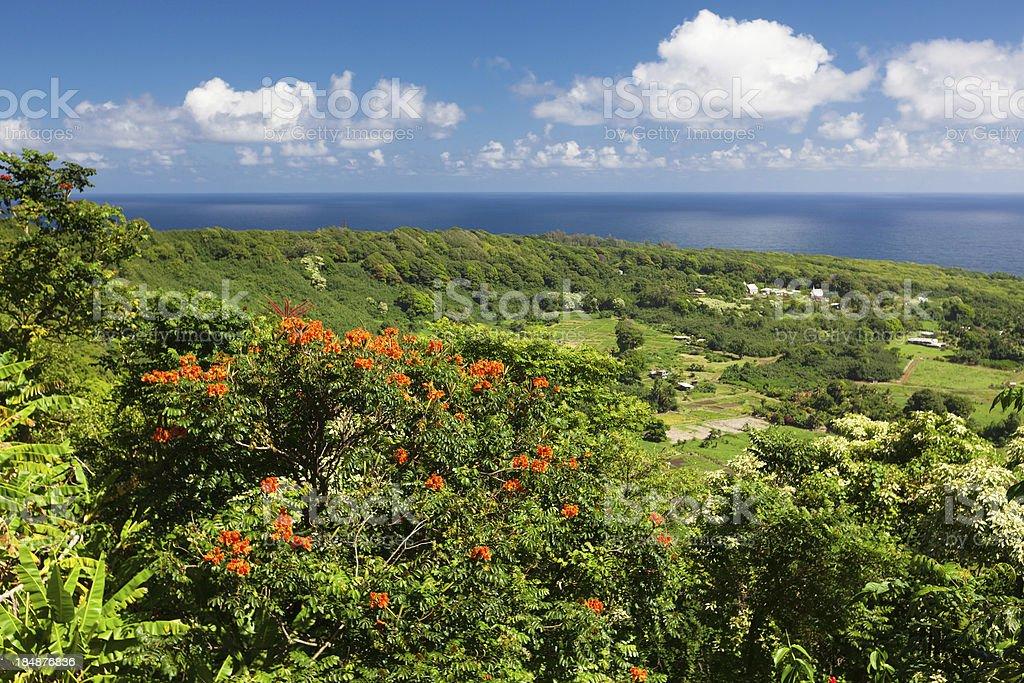 ocean view on tropical island - maui .hawaii royalty-free stock photo