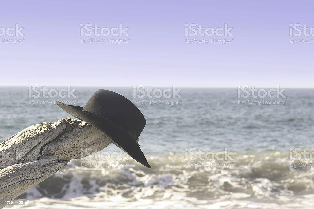 Oceanic Vacation royalty-free stock photo
