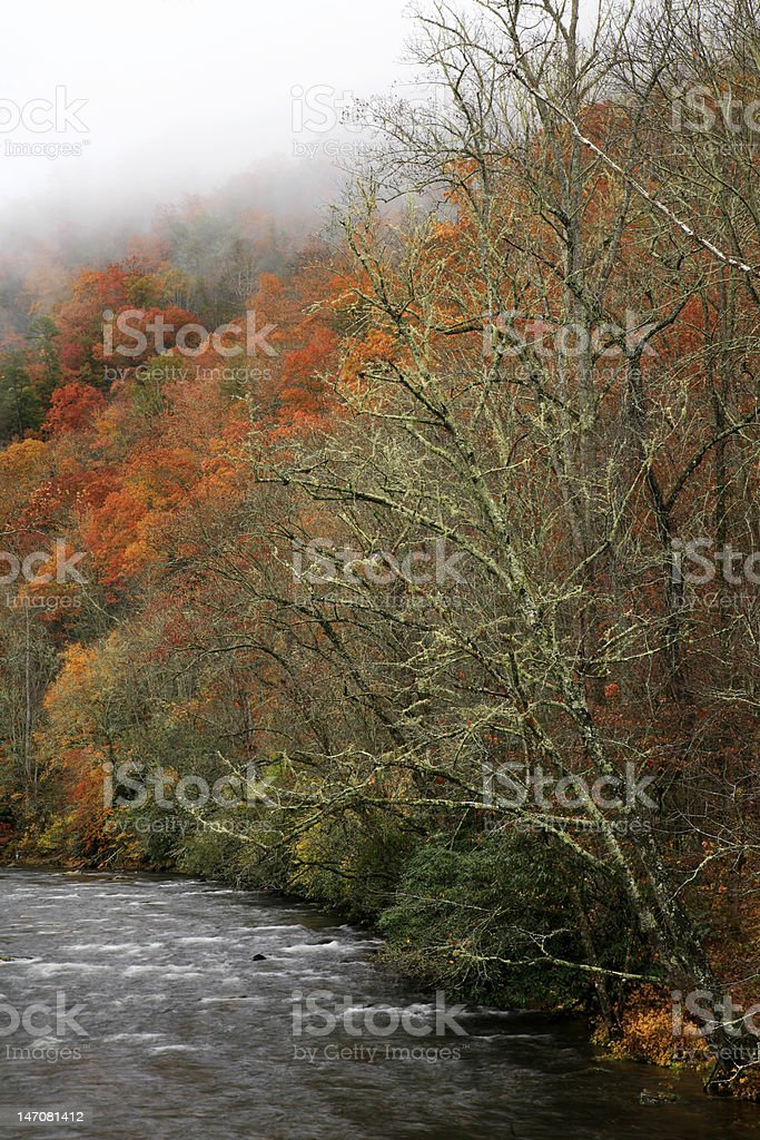 oconauluftee river in autumn royalty-free stock photo