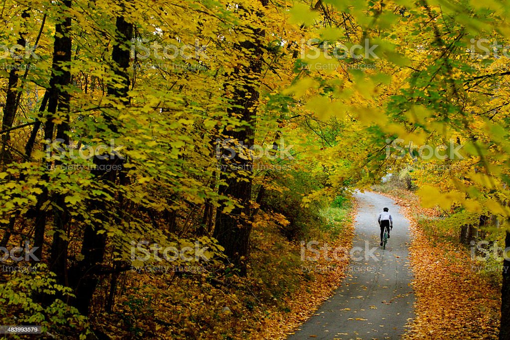 October Road Bicycling royalty-free stock photo