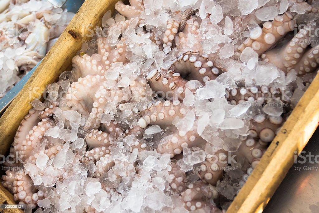 Octopus in fish Greek market on island Kalymnos stock photo