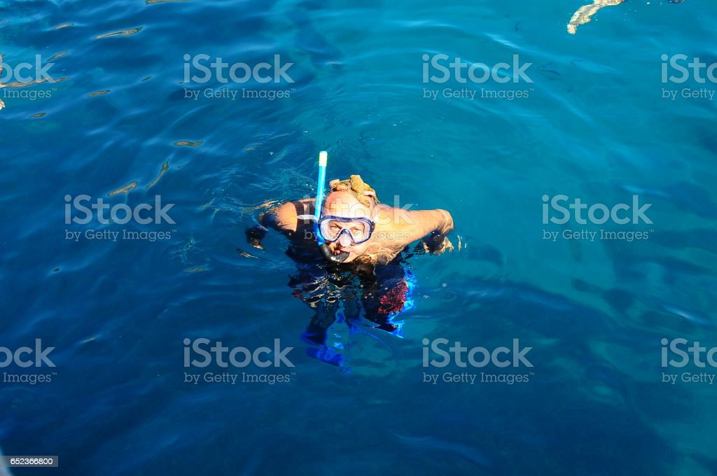 octopus on divers head stock photo