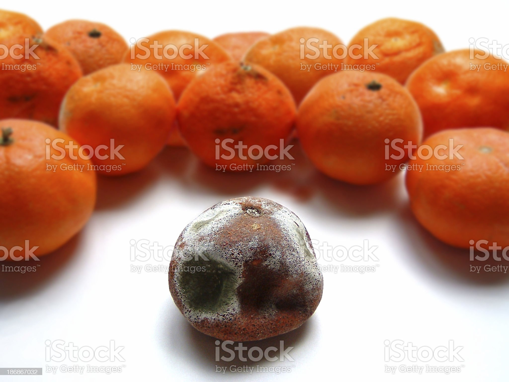 odd one out 2 royalty-free stock photo