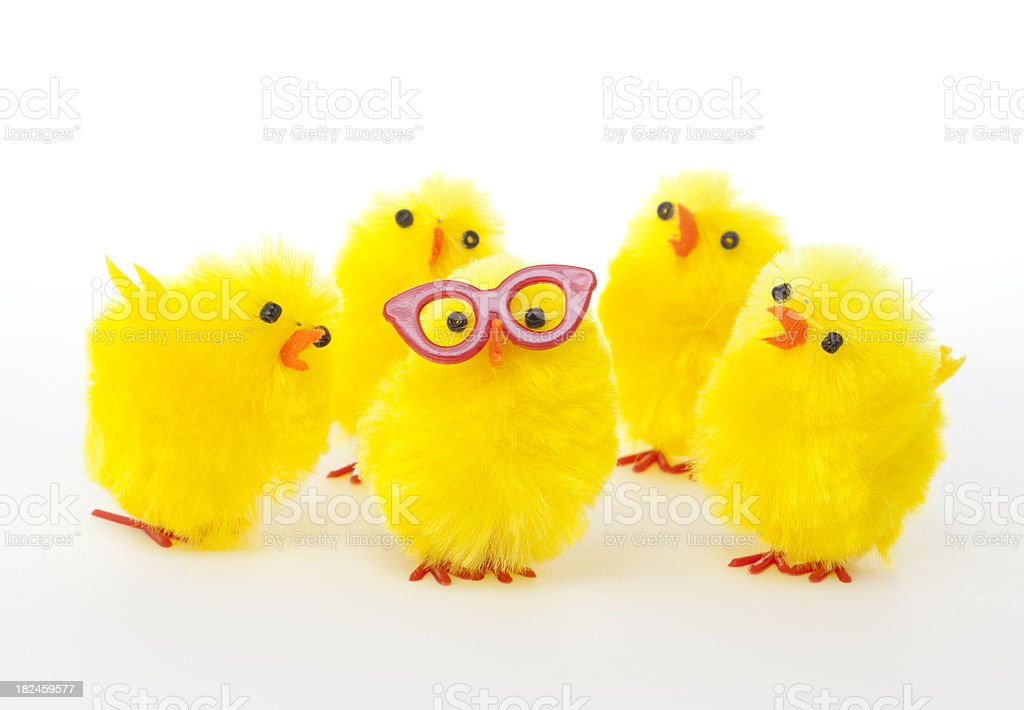 odd one out royalty-free stock photo