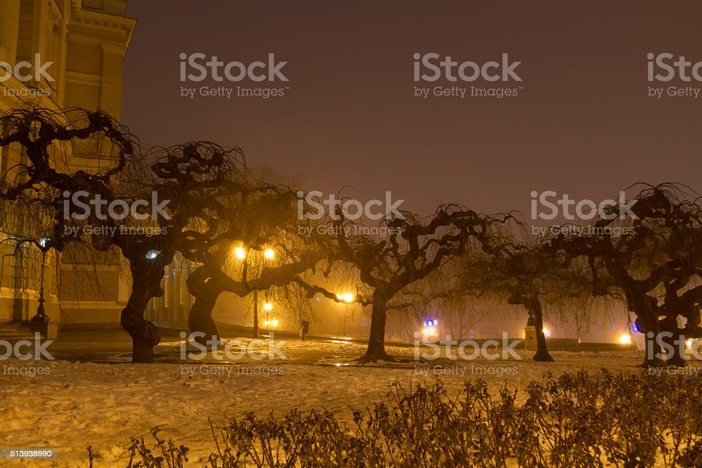 Odessa in the fog. Christmas. stock photo