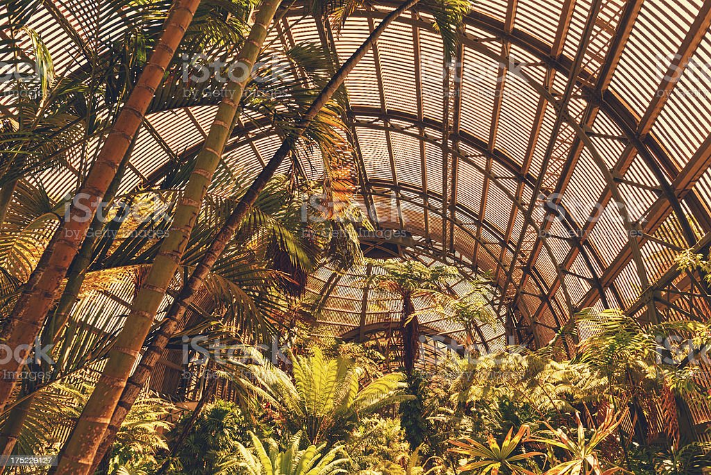 HDR of a greenhouse royalty-free stock photo