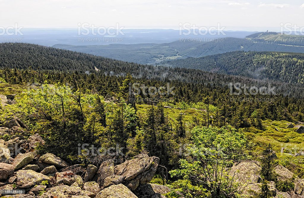 HDR of Harz National Park landscape (Germany) stock photo