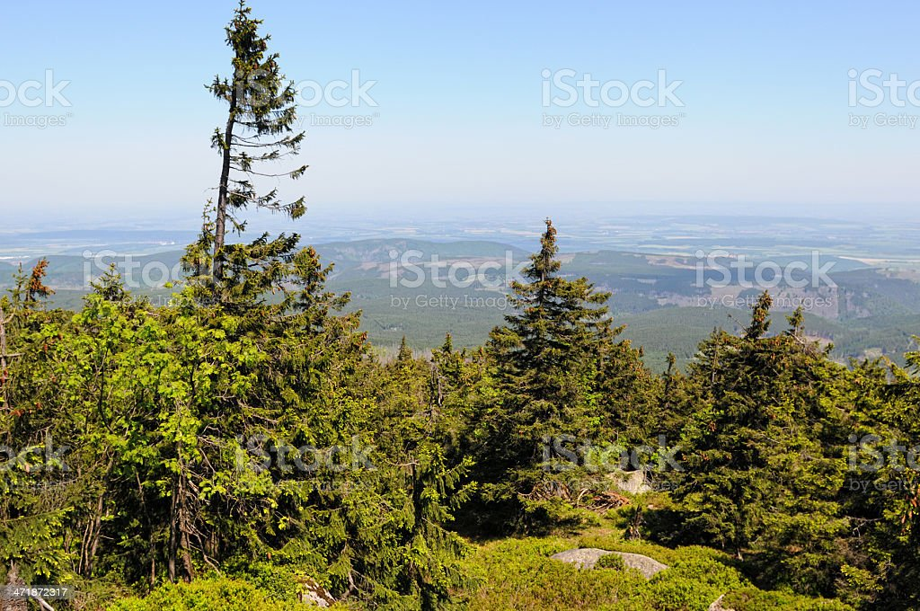 HDR of Harz National Park landscape (Germany) royalty-free stock photo