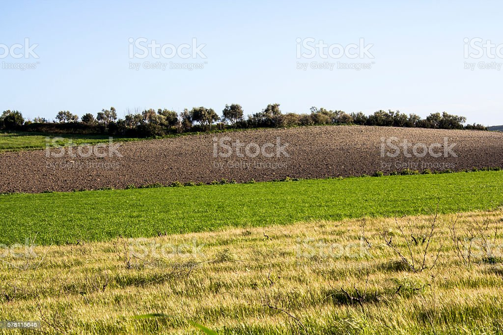 of St. Helens Country stock photo