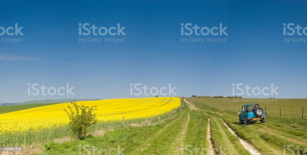 Off road driving, bio-fuel crop stock photo