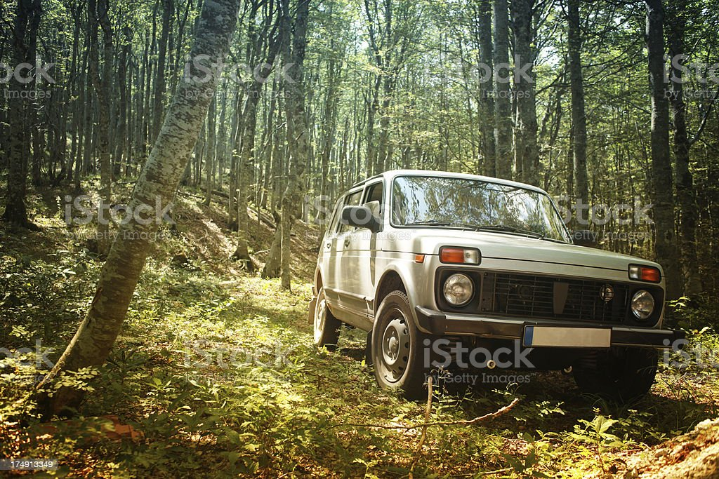 Off road jeep adventure in forest stock photo