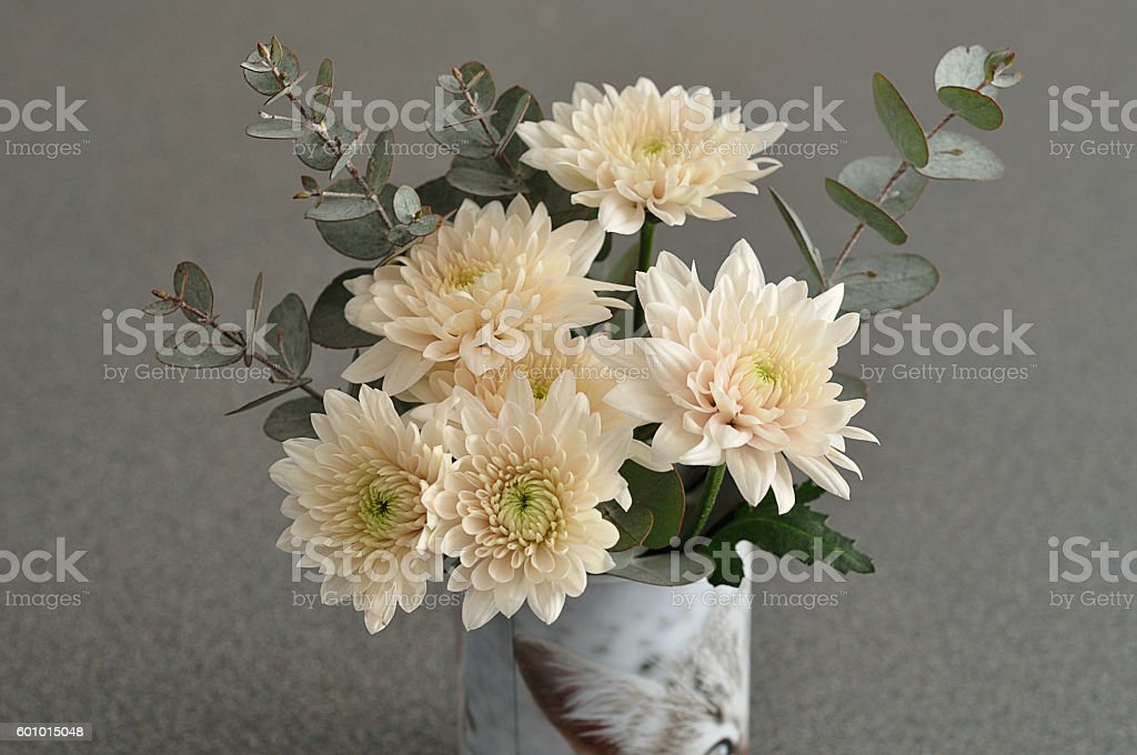Off white asters with green branches stock photo