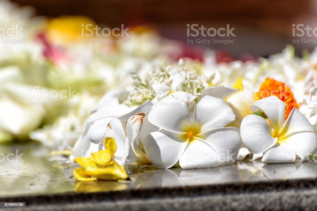 offerings in a buddhistic temple stock photo