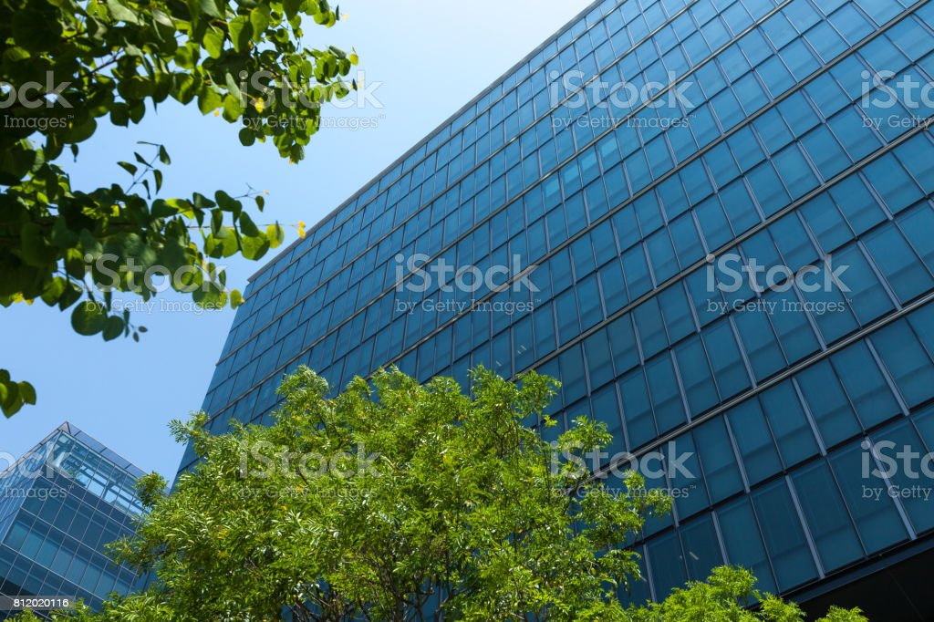 Office building and green. stock photo