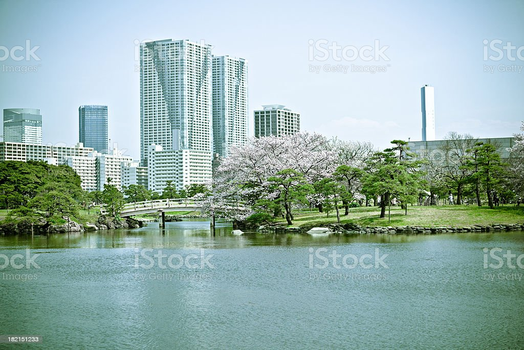 office building and japanese garden royalty-free stock photo