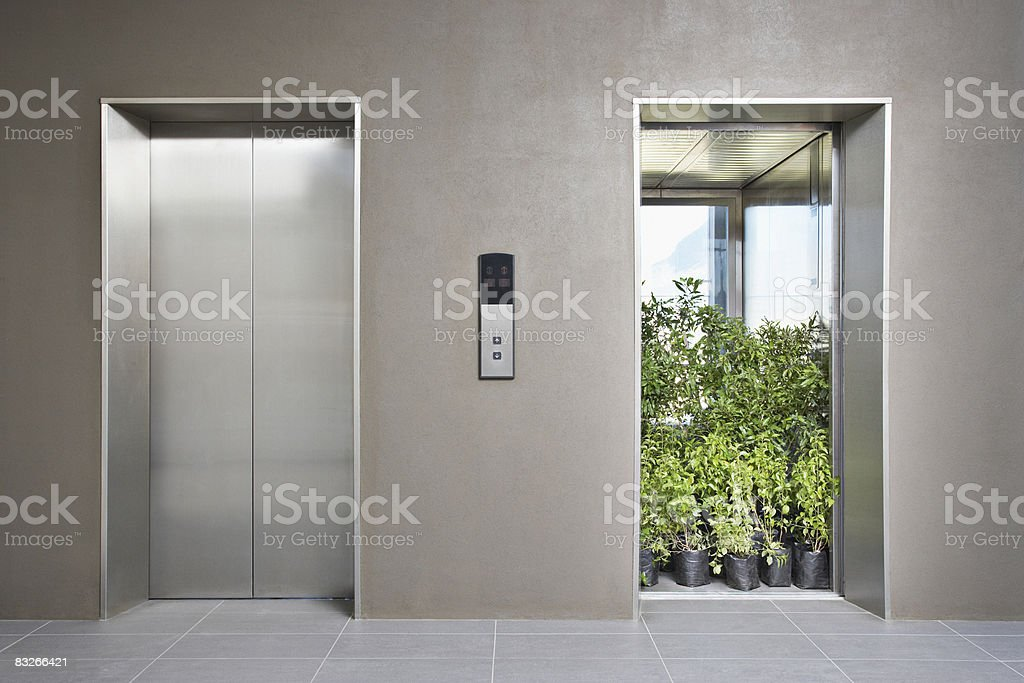 Office elevator full of plants stock photo