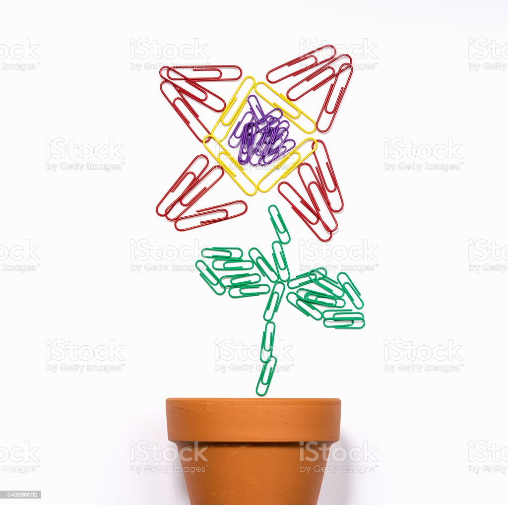 Office plant made of paper clips stock photo