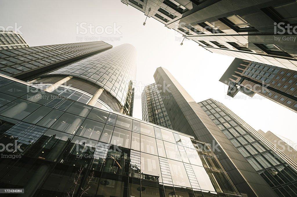 Office skysraper in the sun royalty-free stock photo