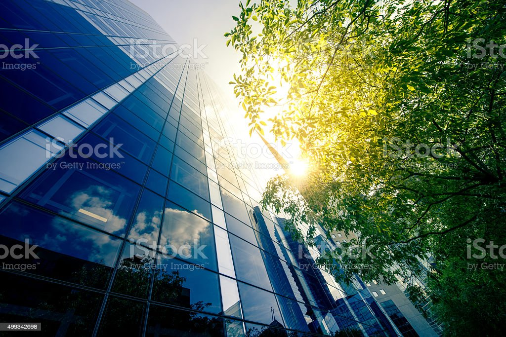 Office skysraper in the sun stock photo