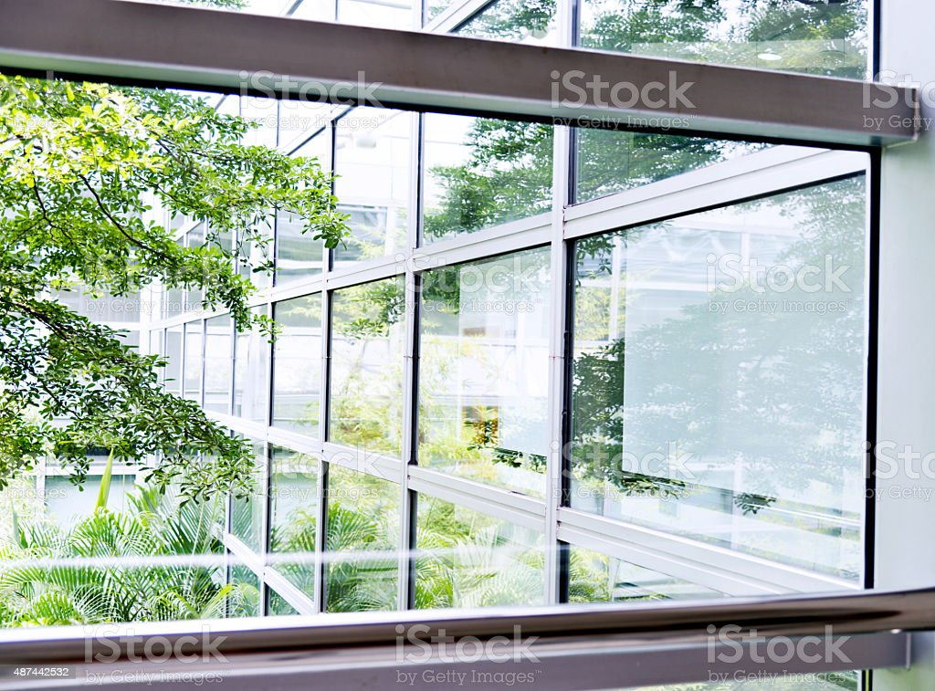 Office windows with garden view stock photo