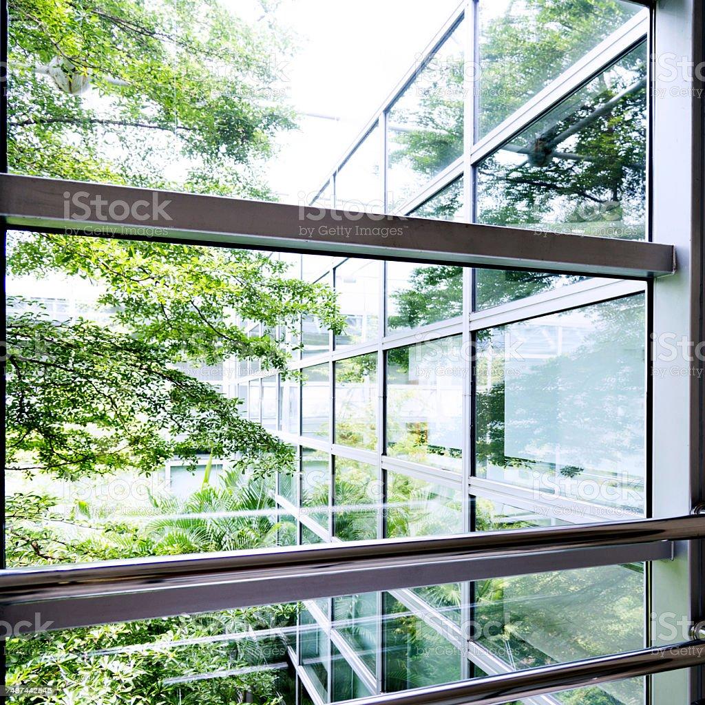 Modern office windows with garden view.