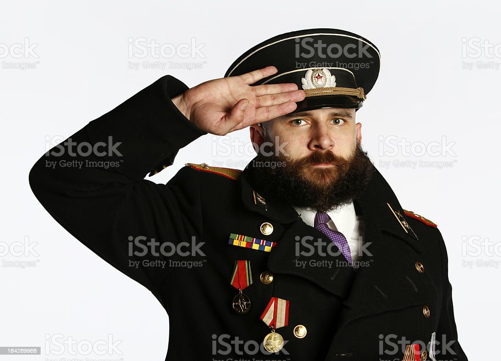 Officer's Salute stock photo