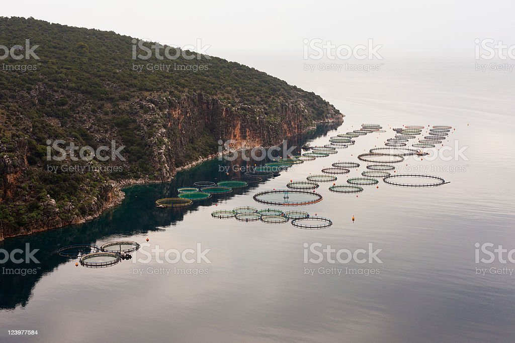 Offshore open sea fishfarm royalty-free stock photo