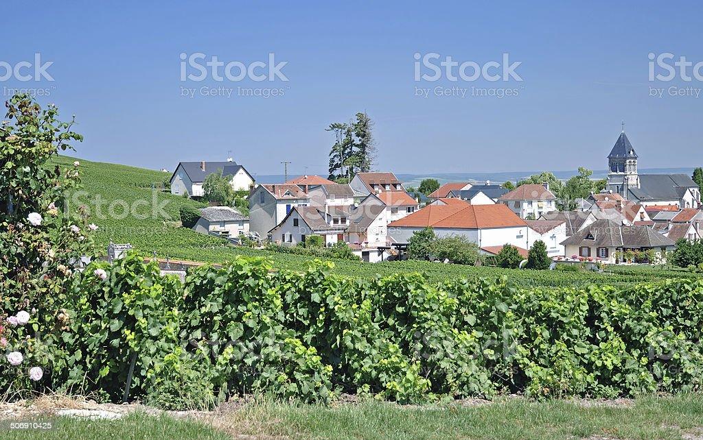 Oger,Champagne region,France stock photo