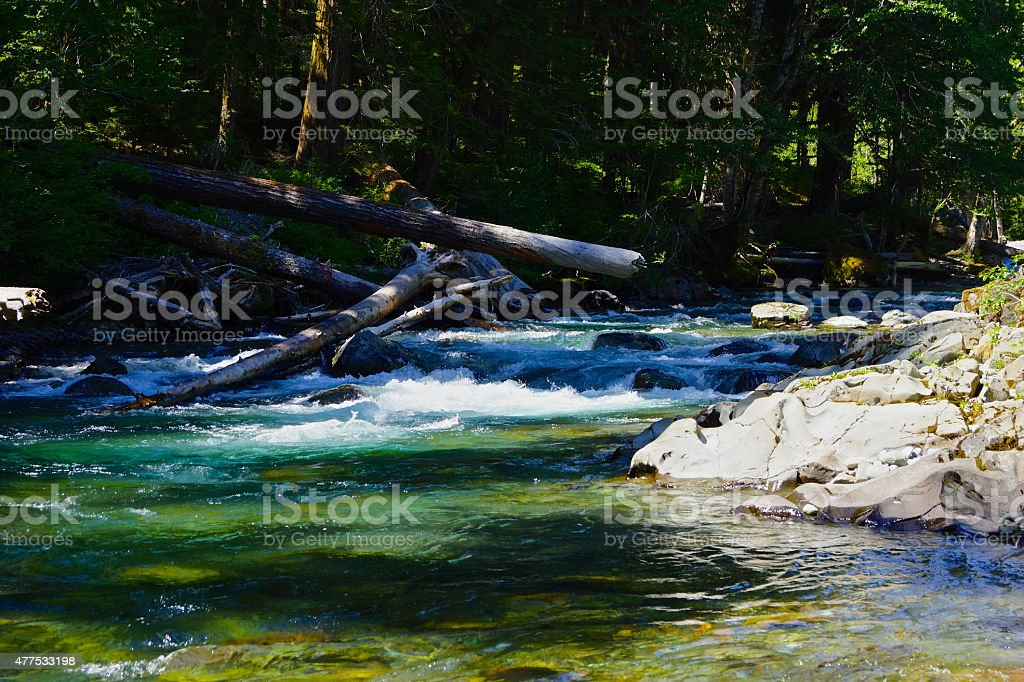 Ohanapecosh River Emerald stock photo