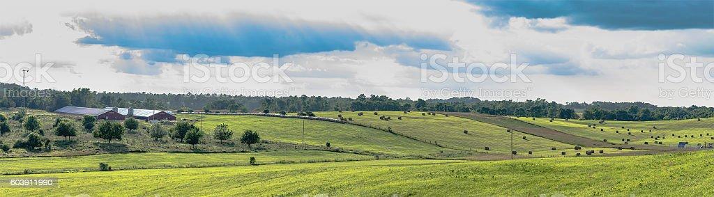 Ohio panoramic landscape stock photo