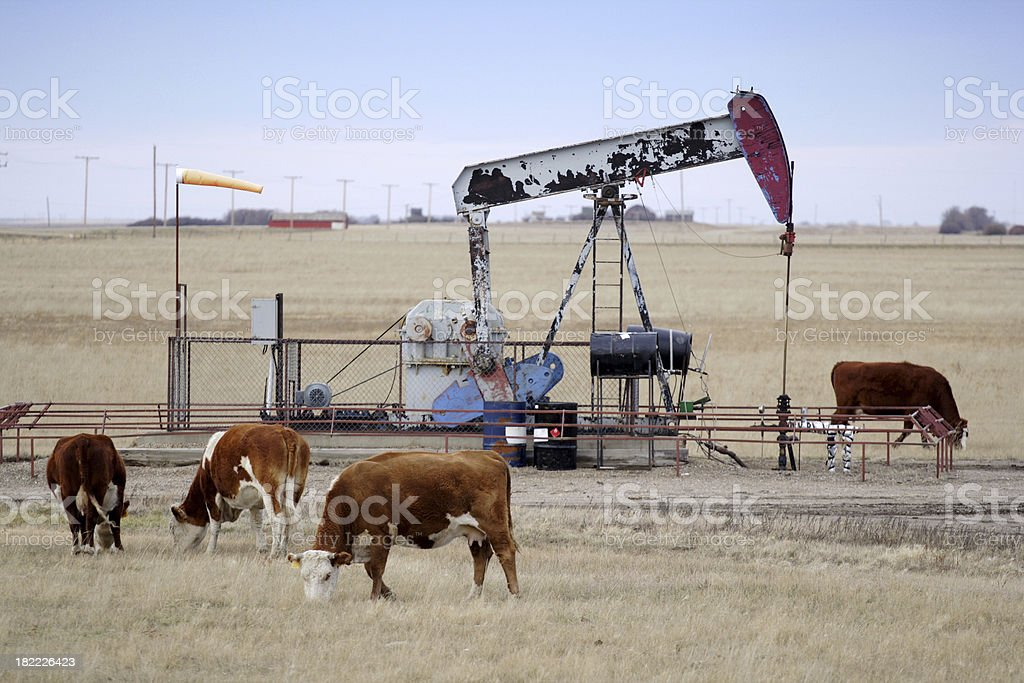 Oil and Farming royalty-free stock photo