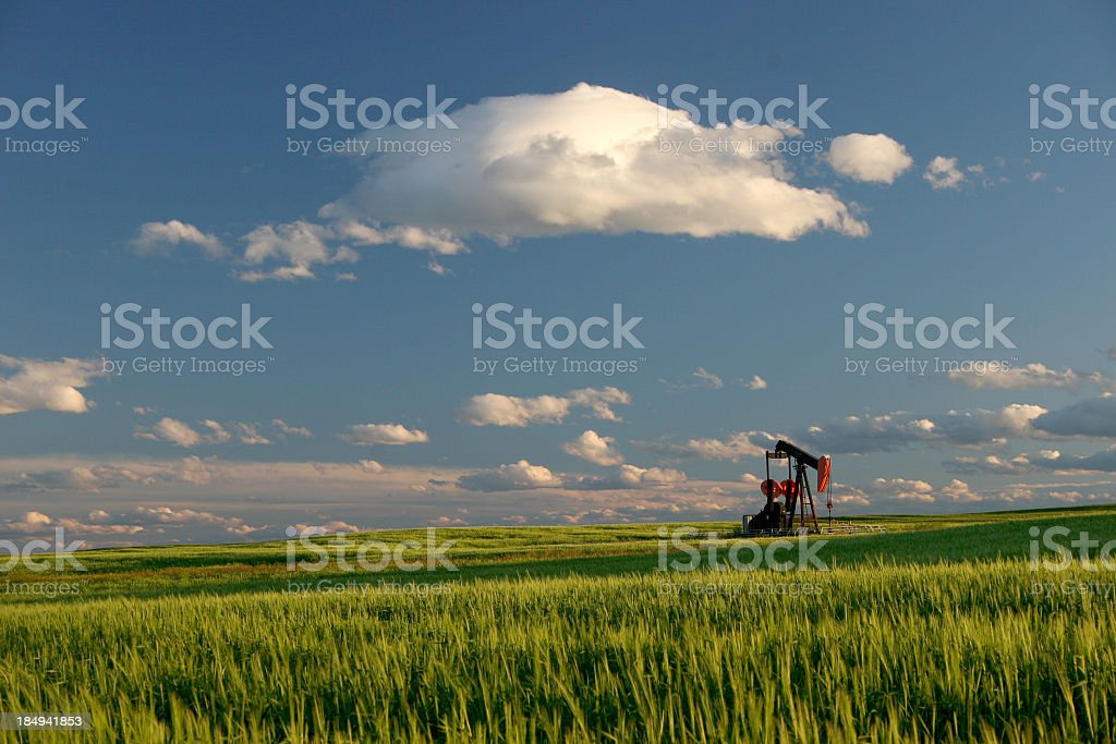 Oil Field and Pumpjack in Alberta stock photo