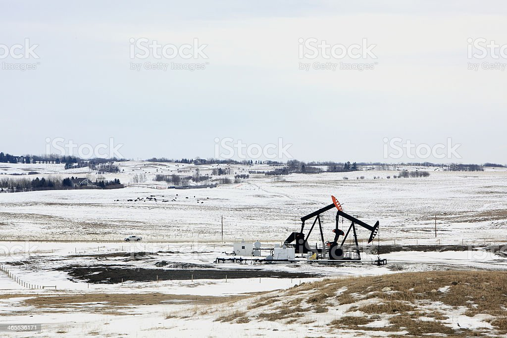 Oil Industry Pump Jacks In Winter Agricultural Setting royalty-free stock photo
