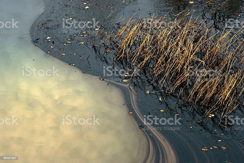 Oil pollution stock photo